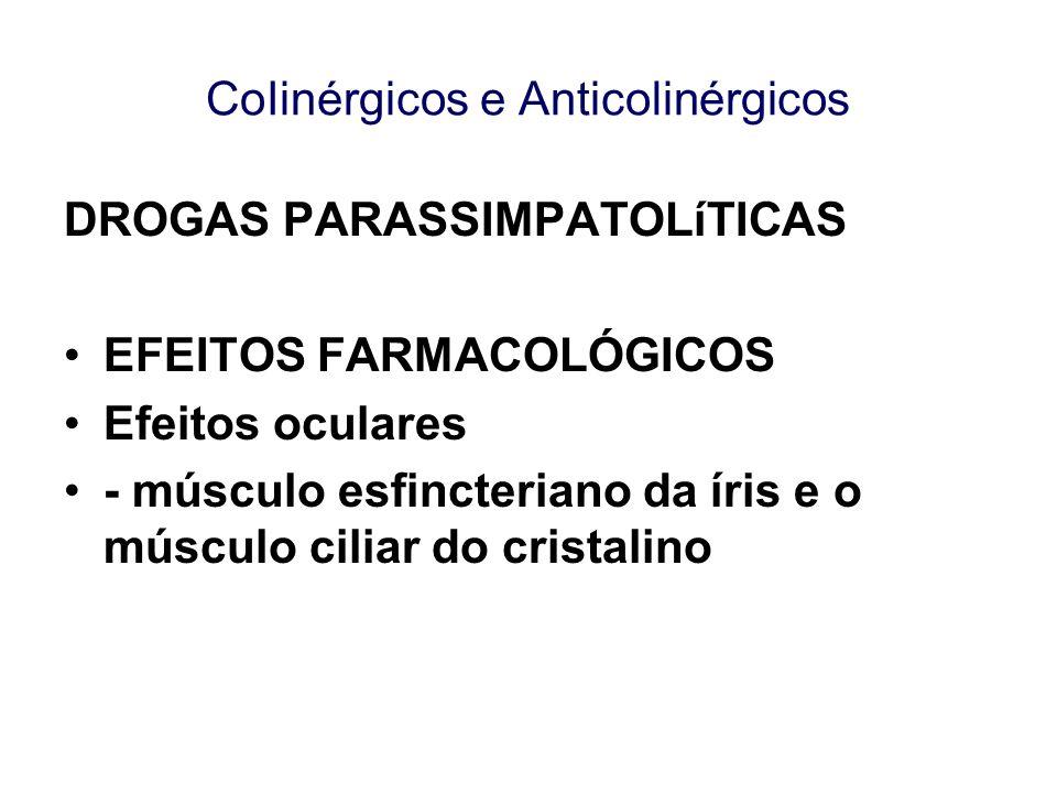 CoIinérgicos e Anticolinérgicos DROGAS PARASSIMPATOLíTICAS EFEITOS FARMACOLÓGICOS Efeitos oculares - músculo esfincteriano da íris e o músculo ciliar