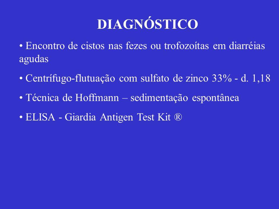 DIAGNÓSTICO Encontro de cistos nas fezes ou trofozoítas em diarréias agudas Centrífugo-flutuação com sulfato de zinco 33% - d. 1,18 Técnica de Hoffman