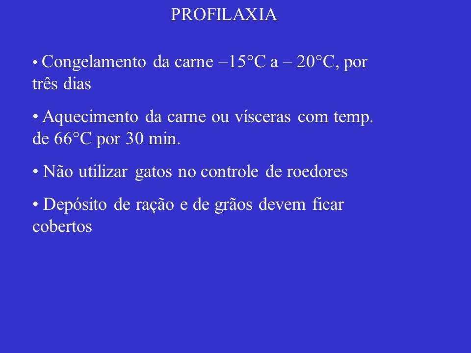 PROFILAXIA Congelamento da carne –15°C a – 20°C, por três dias Aquecimento da carne ou vísceras com temp. de 66°C por 30 min. Não utilizar gatos no co