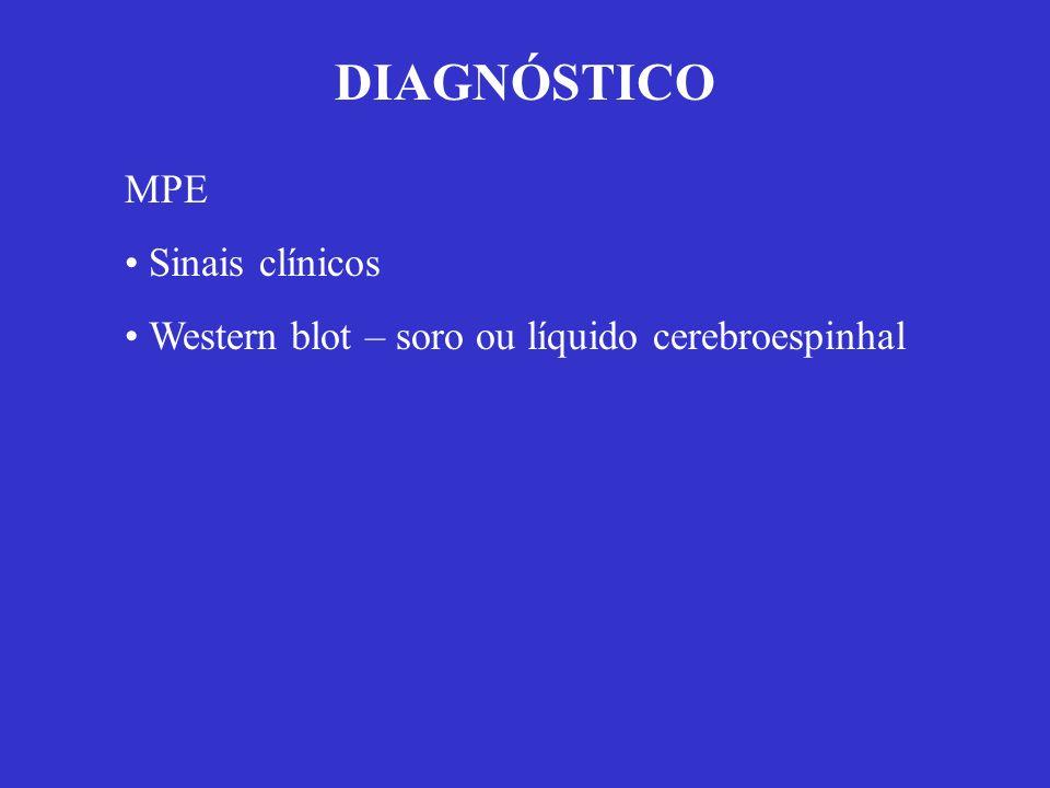 DIAGNÓSTICO MPE Sinais clínicos Western blot – soro ou líquido cerebroespinhal