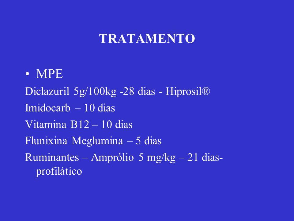 TRATAMENTO MPE Diclazuril 5g/100kg -28 dias - Hiprosil® Imidocarb – 10 dias Vitamina B12 – 10 dias Flunixina Meglumina – 5 dias Ruminantes – Amprólio