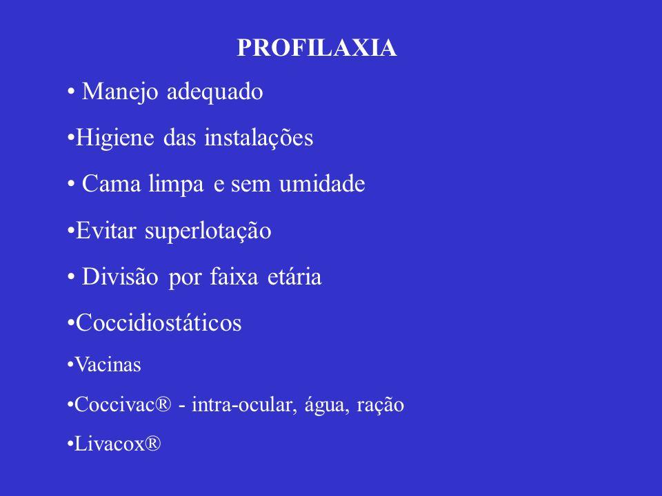 PROFILAXIA Manejo adequado Higiene das instalações Cama limpa e sem umidade Evitar superlotação Divisão por faixa etária Coccidiostáticos Vacinas Cocc