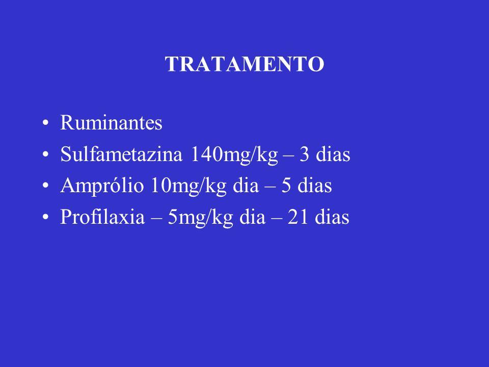 TRATAMENTO Ruminantes Sulfametazina 140mg/kg – 3 dias Amprólio 10mg/kg dia – 5 dias Profilaxia – 5mg/kg dia – 21 dias
