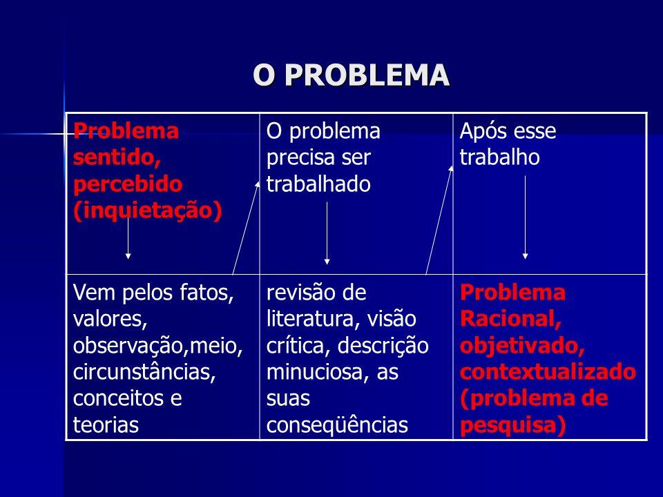 O PROBLEMA Problema sentido, percebido (inquietação) O problema precisa ser trabalhado Após esse trabalho Vem pelos fatos, valores, observação,meio, c