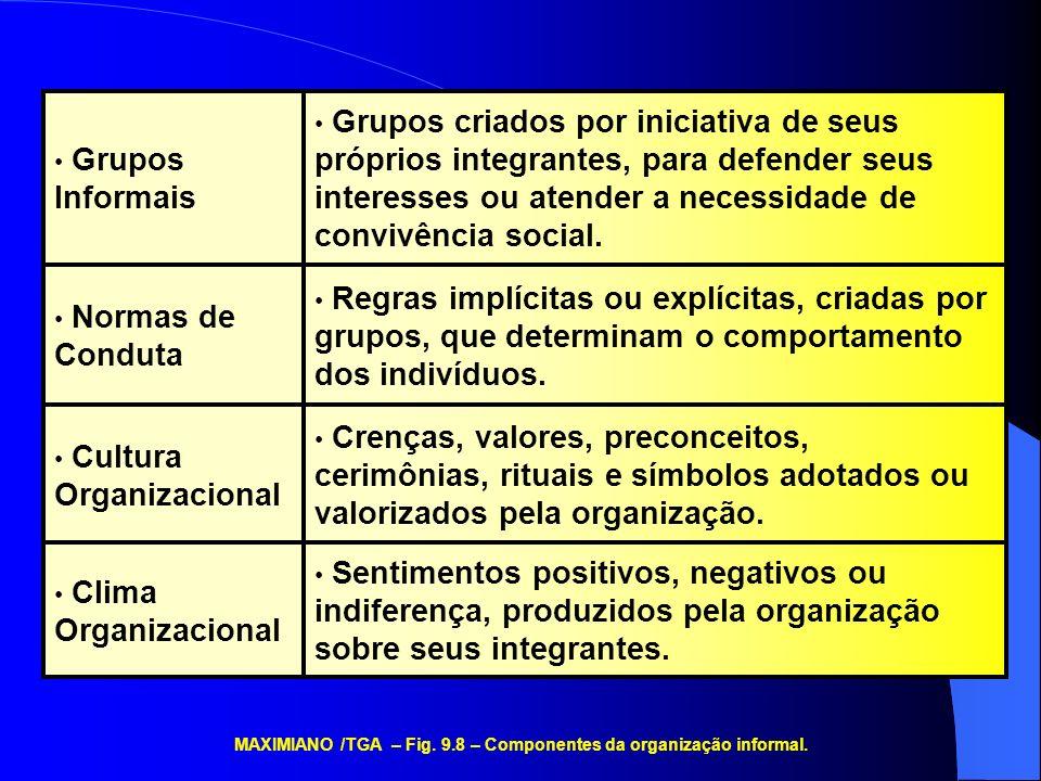 Sentimentos positivos, negativos ou indiferença, produzidos pela organização sobre seus integrantes. Crenças, valores, preconceitos, cerimônias, ritua