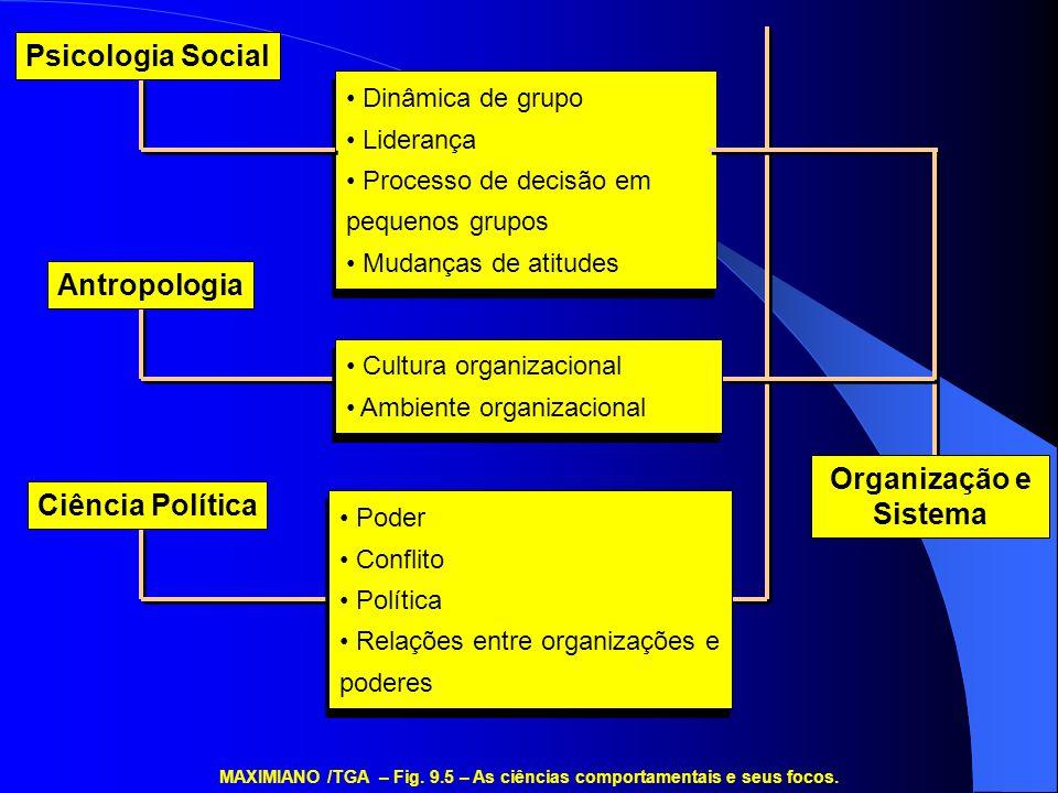 Dinâmica de grupo Liderança Processo de decisão em pequenos grupos Mudanças de atitudes Dinâmica de grupo Liderança Processo de decisão em pequenos gr