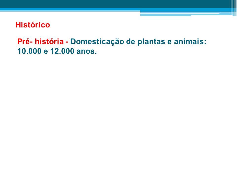 Pré- história - Domesticação de plantas e animais: 10.000 e 12.000 anos. Histórico
