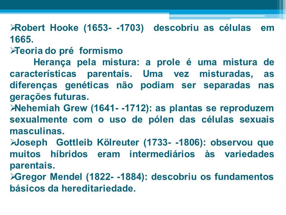 Robert Hooke (1653- -1703) descobriu as células em 1665. Teoria do pré formismo Herança pela mistura: a prole é uma mistura de características parenta