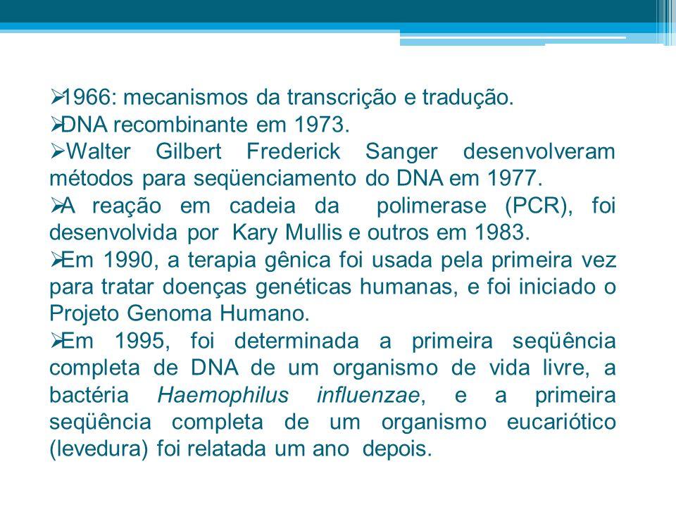 1966: mecanismos da transcrição e tradução. DNA recombinante em 1973. Walter Gilbert Frederick Sanger desenvolveram métodos para seqüenciamento do DNA