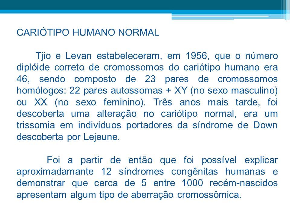 CARIÓTIPO HUMANO NORMAL Tjio e Levan estabeleceram, em 1956, que o número diplóide correto de cromossomos do cariótipo humano era 46, sendo composto d