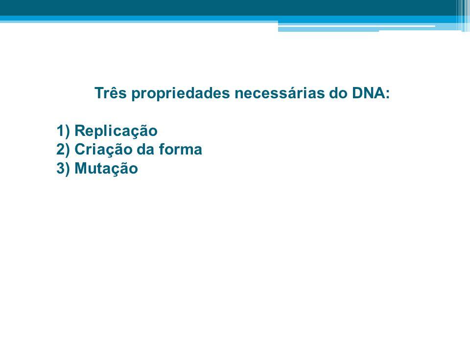A Importância da Genética Genética: ciência relativamente nova.
