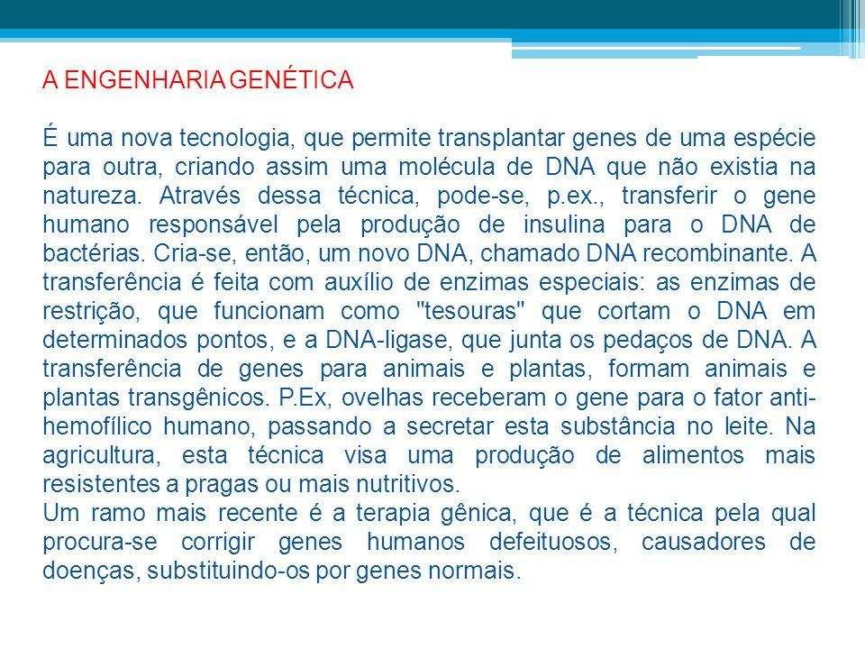 A ENGENHARIA GENÉTICA É uma nova tecnologia, que permite transplantar genes de uma espécie para outra, criando assim uma molécula de DNA que não exist