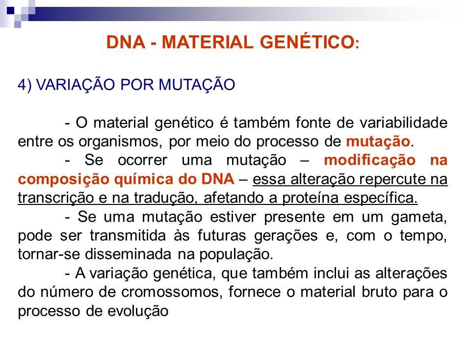 DNA - MATERIAL GENÉTICO : 4) VARIAÇÃO POR MUTAÇÃO - O material genético é também fonte de variabilidade entre os organismos, por meio do processo de m