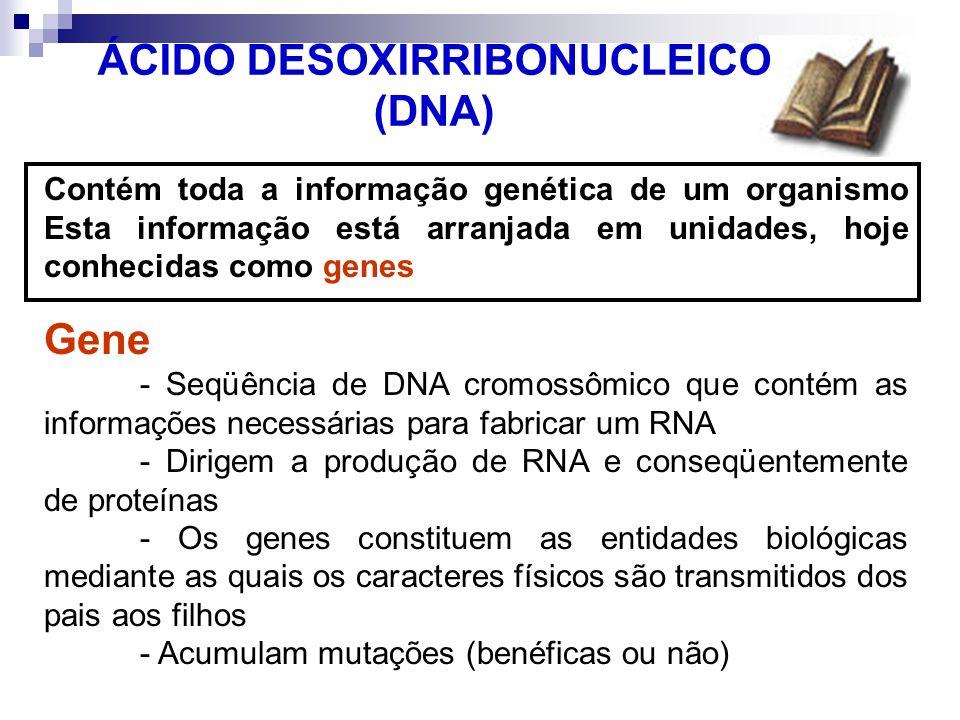 ÁCIDO DESOXIRRIBONUCLEICO (DNA) Contém toda a informação genética de um organismo Esta informação está arranjada em unidades, hoje conhecidas como gen