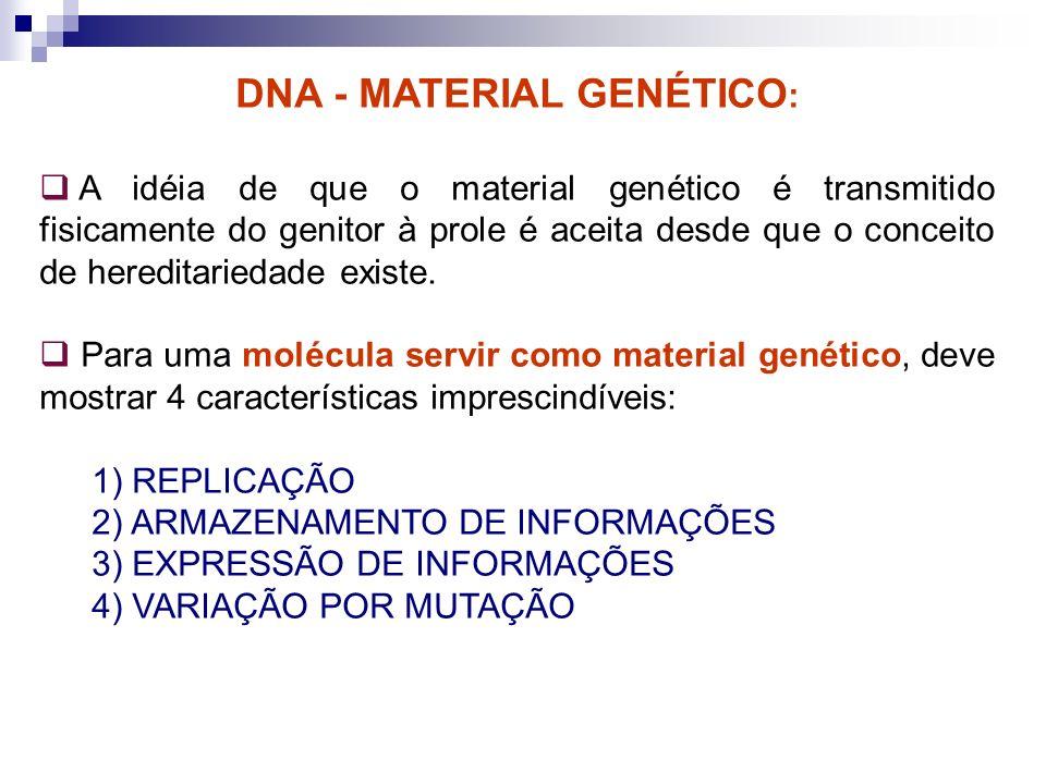 DNA - MATERIAL GENÉTICO : A idéia de que o material genético é transmitido fisicamente do genitor à prole é aceita desde que o conceito de hereditarie