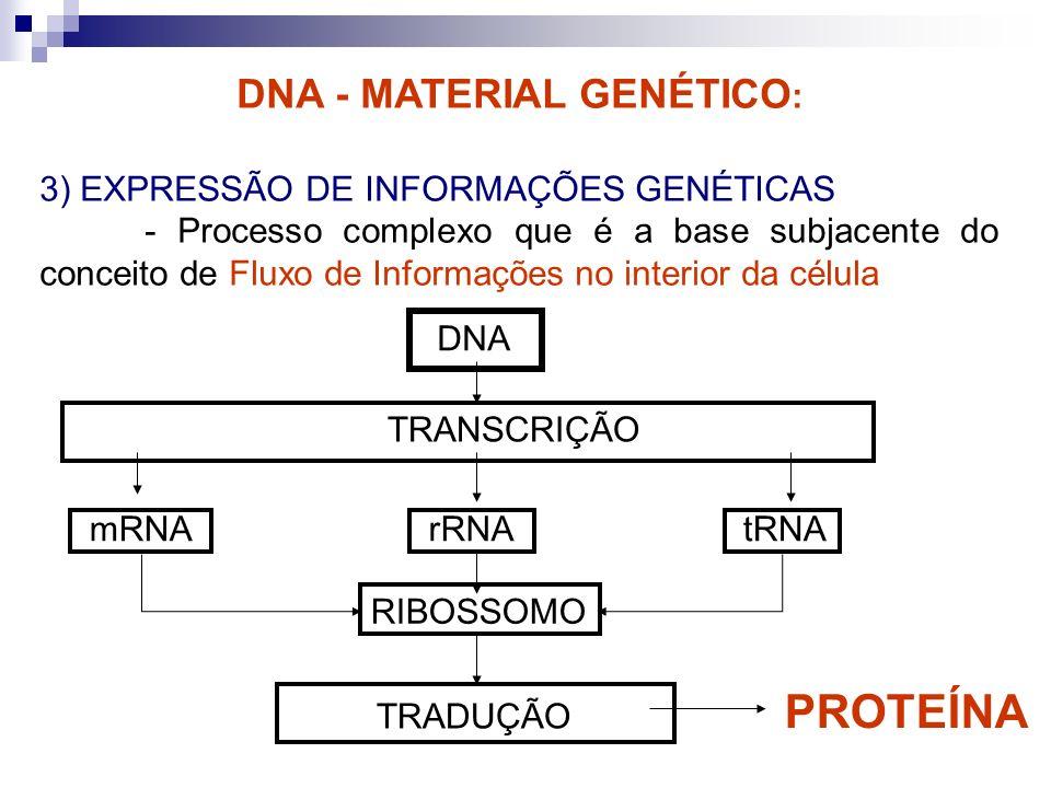 DNA - MATERIAL GENÉTICO : 3) EXPRESSÃO DE INFORMAÇÕES GENÉTICAS - Processo complexo que é a base subjacente do conceito de Fluxo de Informações no int