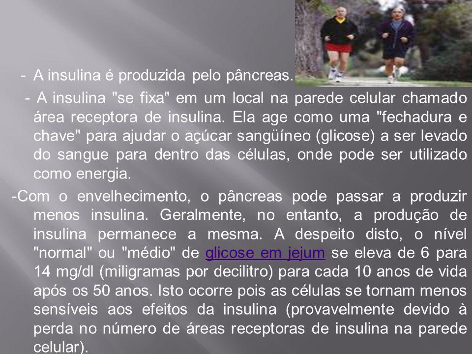 - A insulina é produzida pelo pâncreas. - A insulina