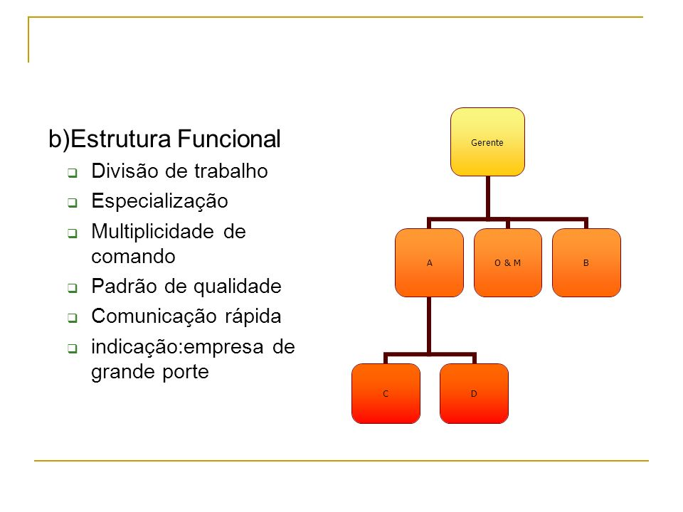 b)Estrutura Funcional Divisão de trabalho Especialização Multiplicidade de comando Padrão de qualidade Comunicação rápida indicação:empresa de grande