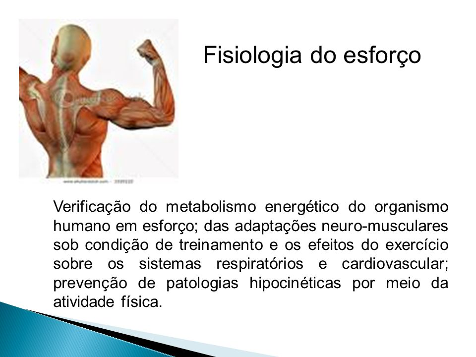 Fisiologia do esforço Verificação do metabolismo energético do organismo humano em esforço; das adaptações neuro-musculares sob condição de treinament