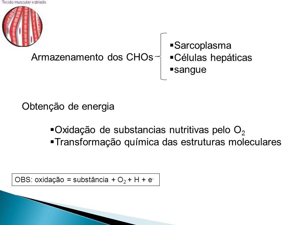 Armazenamento dos CHOs Sarcoplasma Células hepáticas sangue Obtenção de energia Oxidação de substancias nutritivas pelo O 2 Transformação química das