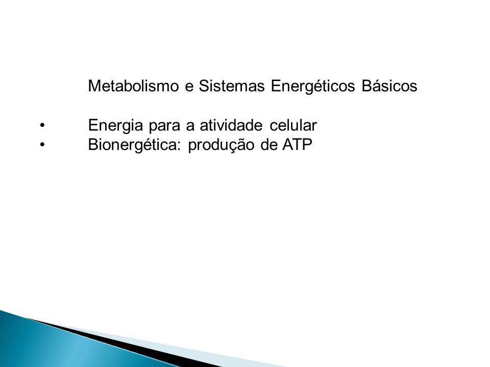 Metabolismo e Sistemas Energéticos Básicos Energia para a atividade celular Bionergética: produção de ATP