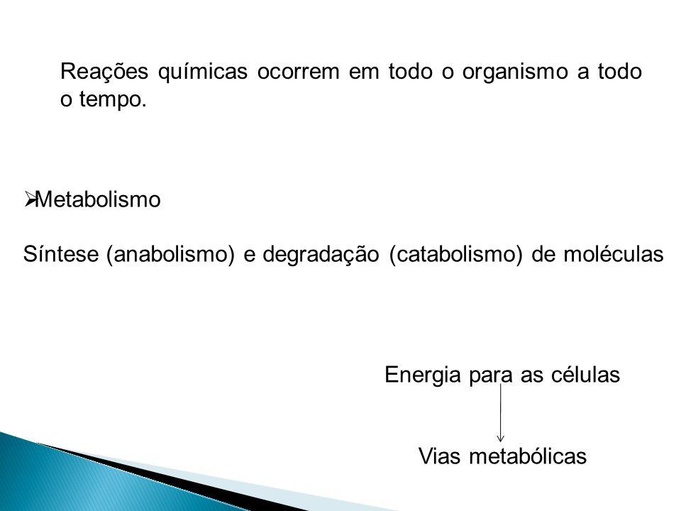 Metabolismo Síntese (anabolismo) e degradação (catabolismo) de moléculas Reações químicas ocorrem em todo o organismo a todo o tempo. Energia para as