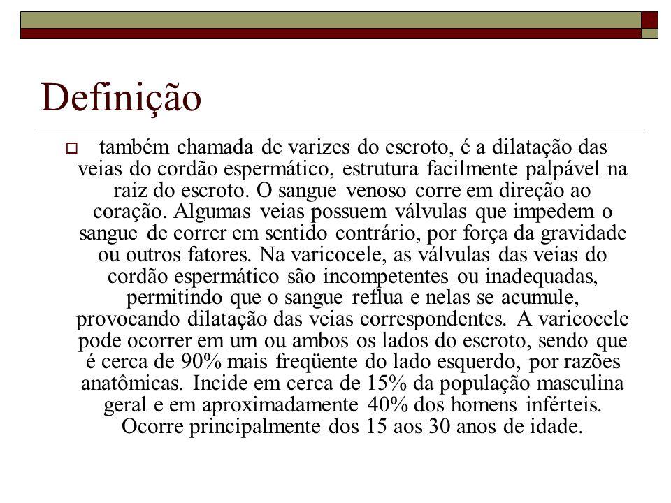 Histórico Geralmente, tanto o testículo como o epidídimo estão envolvidos pela inflamação, daí o nome de orqui-epididimite.