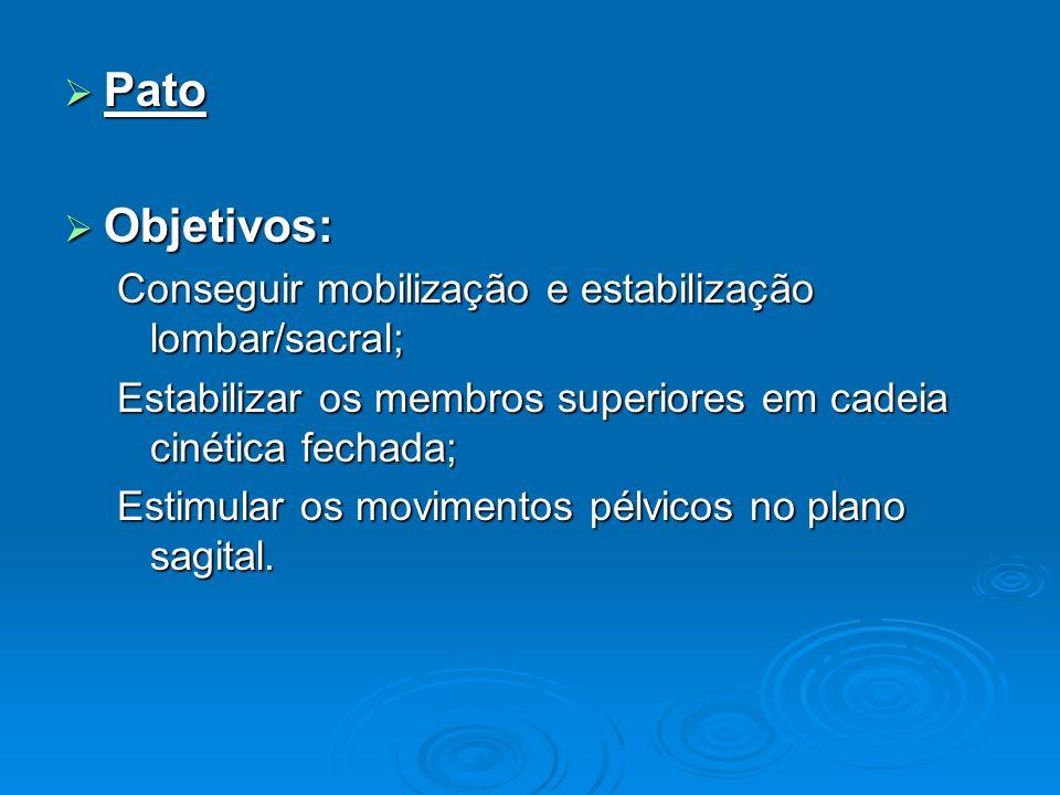 Pato Pato Objetivos: Objetivos: Conseguir mobilização e estabilização lombar/sacral; Estabilizar os membros superiores em cadeia cinética fechada; Est