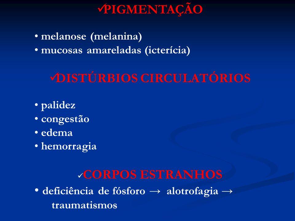 Patologias (esôfago) DEFEITOS CONGÊNITOS: ESTENOSE -persistência do arco aórtico direito FÍSTULAS TRAQUEOESOFÁGICAS -levam à pneumonia por aspiração MEGAESÔFAGO PRIMÁRIO - relacionado à estenose congênita