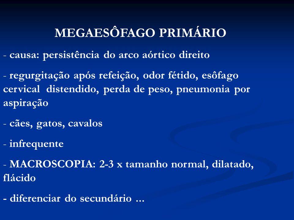 MEGAESÔFAGO SECUNDÁRIO (ACALASIA) - causa: disfunção neuromuscular com relaxamento do esfíncter esofagiano, após deglutição - disfagia, regurgitação, pneumonia secundária - cães: Terriers, Cocker Spaniel, Poodle miniatura - MACROSCOPIA...