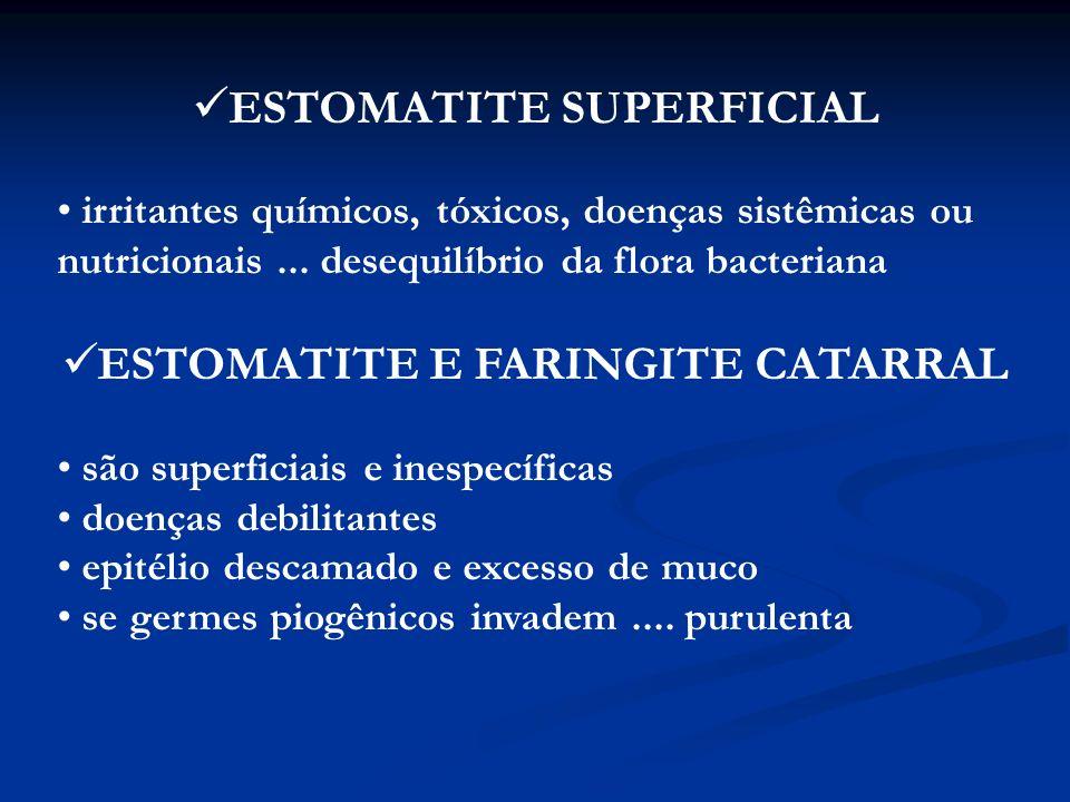 ESTOMATITE VESICULAR Vesículas e bolhas repletas de fluido na mucosa Doenças: (seletividade por espécie ) Febre Aftosa (Picornavírus) – patas fendidas (bov./suíno) Estomatite vesicular (Rabdovírus) – cavalo/bov./suíno Doença vesicular dos suínos (Picornavírus) – suínos Exantema vesicular ( Calicivírus) - suínos Transmissão fácil / rápida pelo fluido das vesículas e saliva