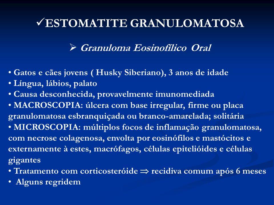 INFLAMAÇÕES (esôfago) ESOFAGITES - raras - causas: corpos estranhos, vômitos, substâncias químicas - infecção bacteriana secundária