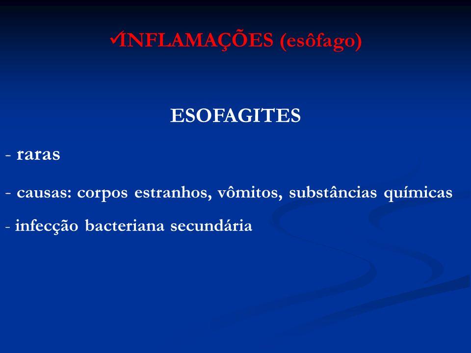 PARASITAS ( cav oral ) Cysticercus cellulosae Cysticercus bovis Gasterophilus Oestrus ovis