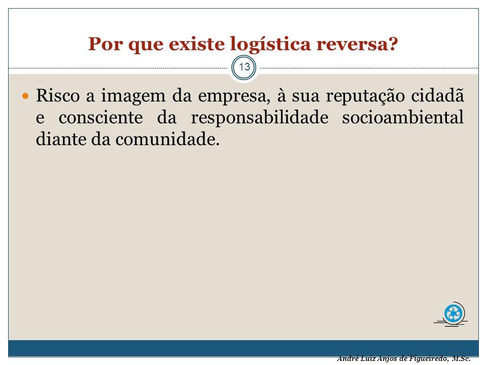 André Luiz Anjos de Figueiredo, M.Sc. Por que existe logística reversa? 13 Risco a imagem da empresa, à sua reputação cidadã e consciente da responsab