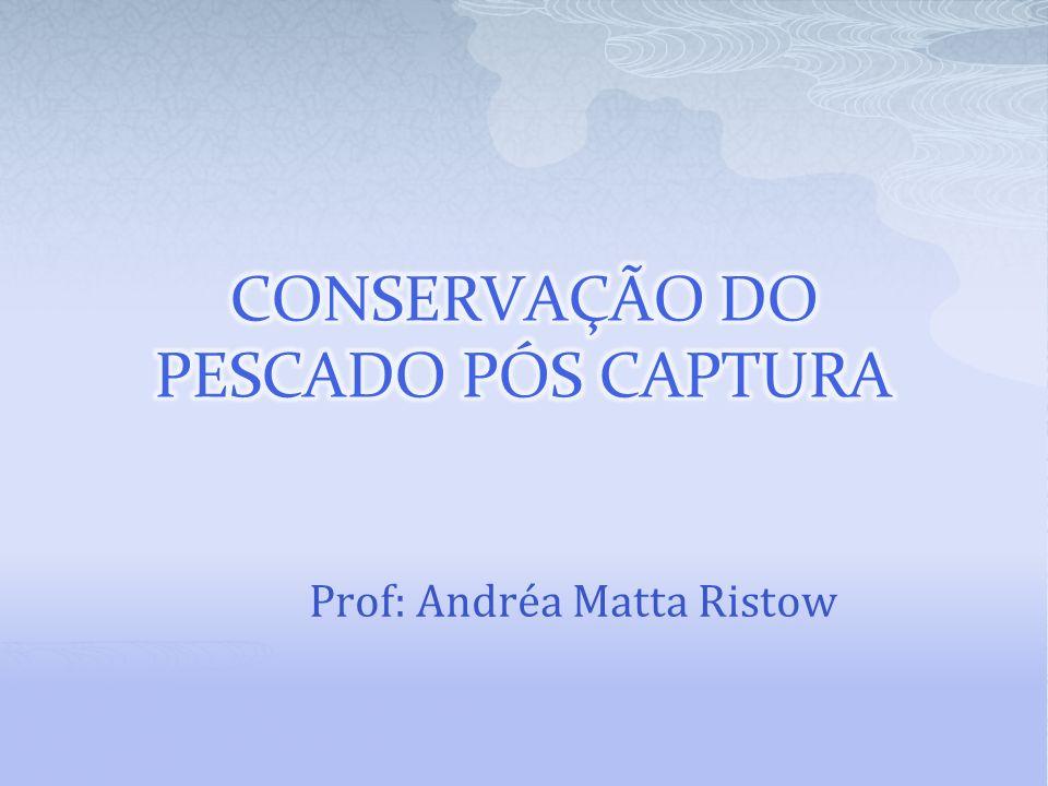 Prof: Andréa Matta Ristow
