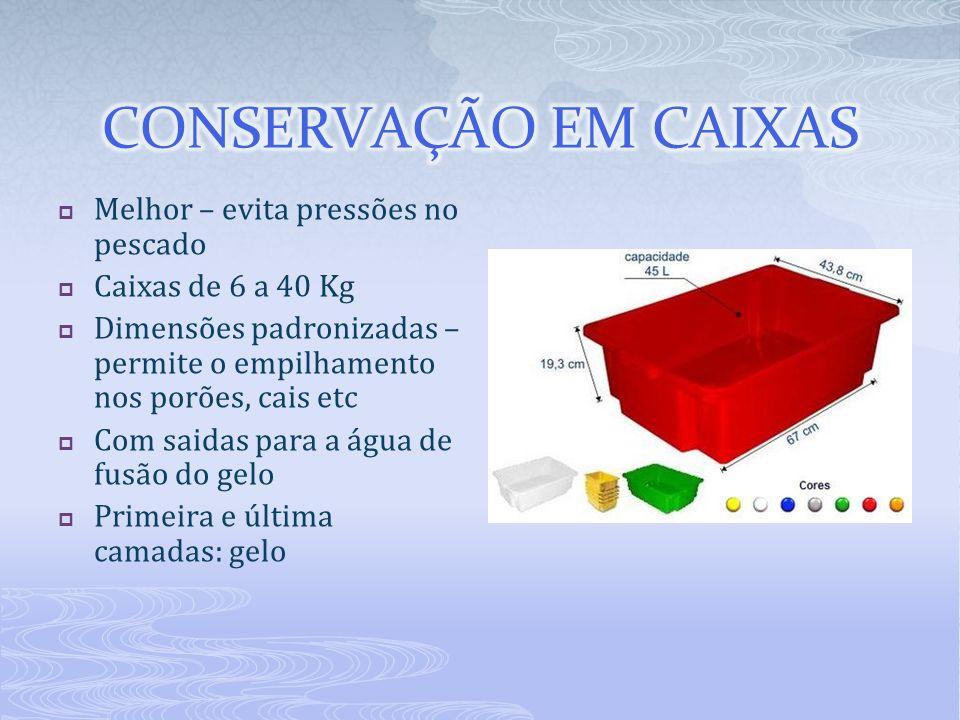Melhor – evita pressões no pescado Caixas de 6 a 40 Kg Dimensões padronizadas – permite o empilhamento nos porões, cais etc Com saidas para a água de