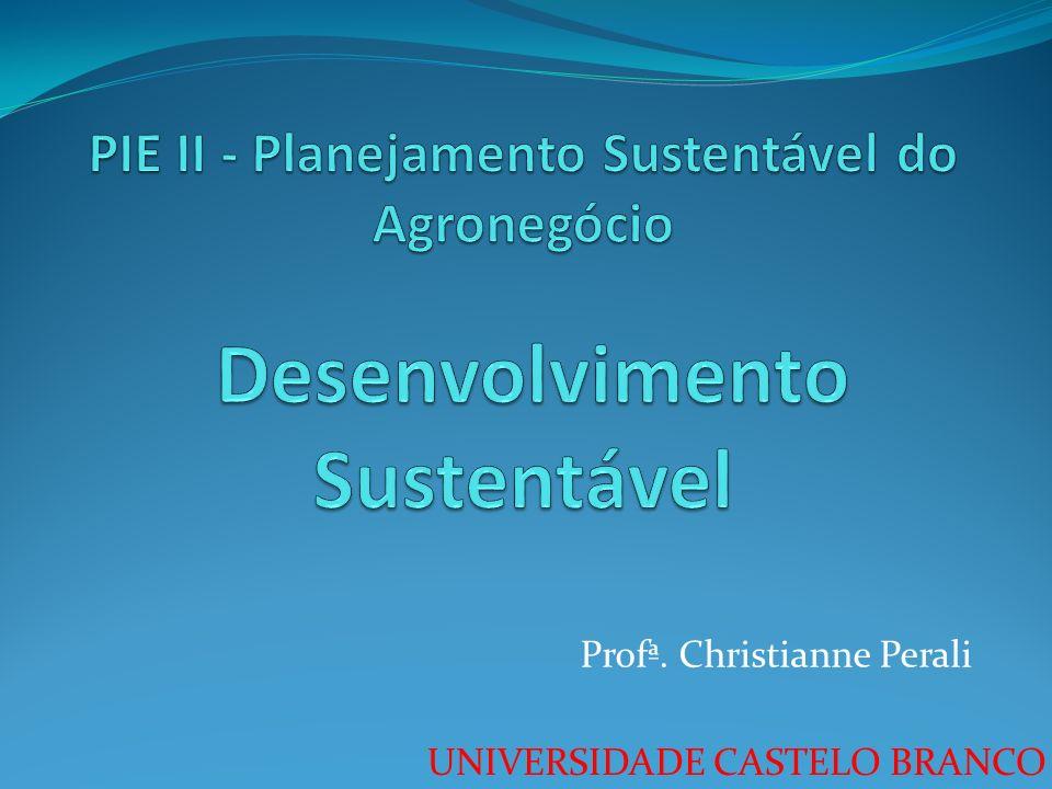 UNIVERSIDADE CASTELO BRANCO Profª. Christianne Perali