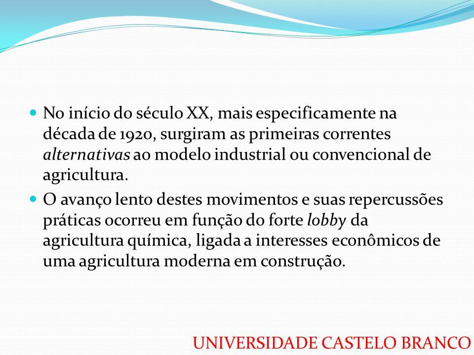UNIVERSIDADE CASTELO BRANCO No início do século XX, mais especificamente na década de 1920, surgiram as primeiras correntes alternativas ao modelo ind