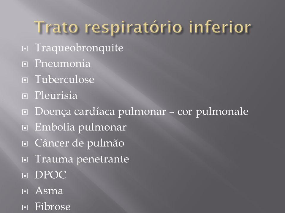 Traqueobronquite Pneumonia Tuberculose Pleurisia Doença cardíaca pulmonar – cor pulmonale Embolia pulmonar Câncer de pulmão Trauma penetrante DPOC Asm