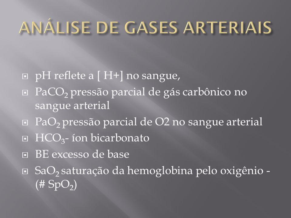 pH reflete a [ H+] no sangue, PaCO 2 pressão parcial de gás carbônico no sangue arterial PaO 2 pressão parcial de O2 no sangue arterial HCO 3 - íon bi
