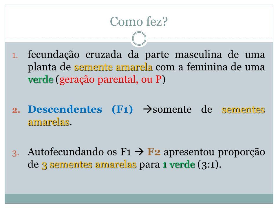 Esquematizando: V = amarela v = verde P amarelas Fenótipo: amarelas Gametas:VV Genótipo: V V F1F1 X