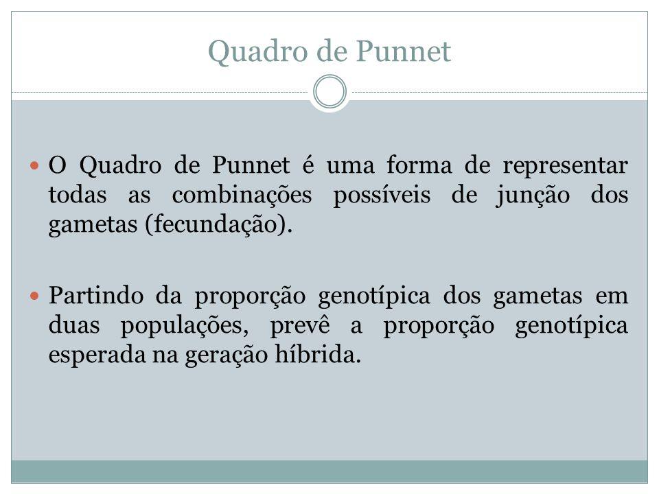 Quadro de Punnet O Quadro de Punnet é uma forma de representar todas as combinações possíveis de junção dos gametas (fecundação). Partindo da proporçã