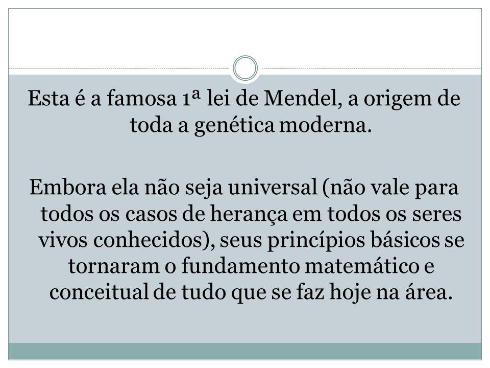 Esta é a famosa 1ª lei de Mendel, a origem de toda a genética moderna. Embora ela não seja universal (não vale para todos os casos de herança em todos