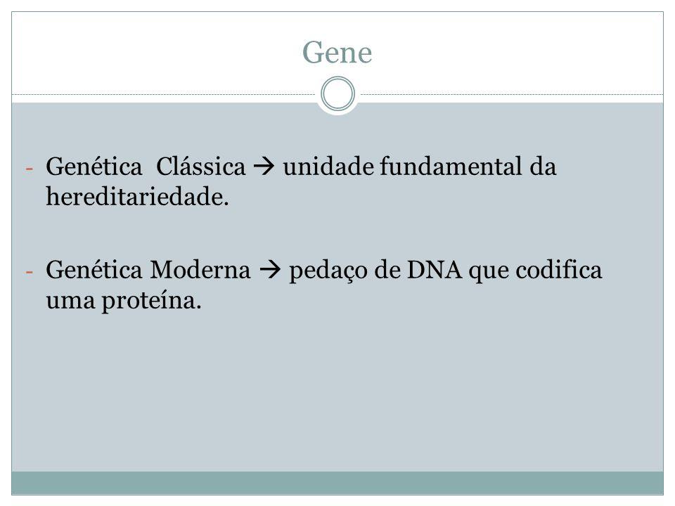 Gene - Genética Clássica unidade fundamental da hereditariedade. - Genética Moderna pedaço de DNA que codifica uma proteína.
