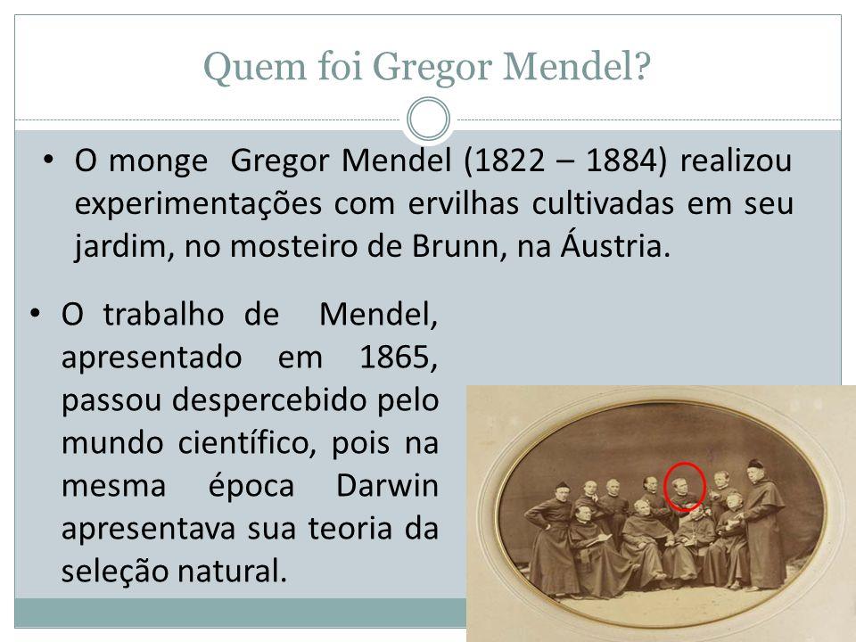 Quem foi Gregor Mendel? O monge Gregor Mendel (1822 – 1884) realizou experimentações com ervilhas cultivadas em seu jardim, no mosteiro de Brunn, na Á