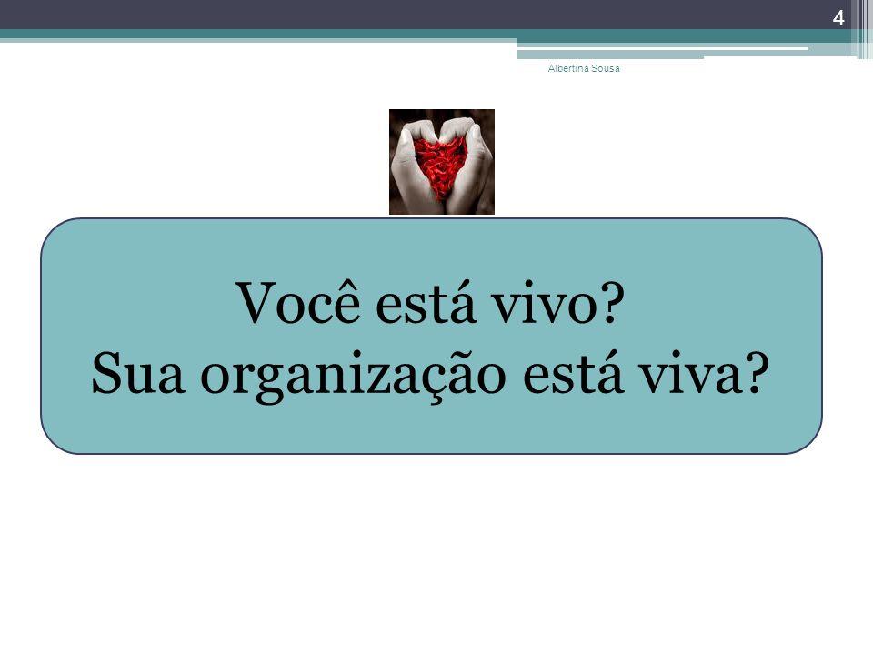 Albertina Sousa 4 Você está vivo? Sua organização está viva?