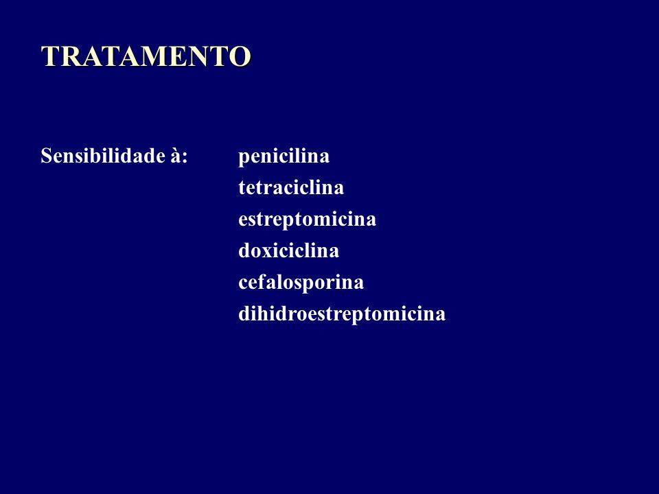TRATAMENTO Sensibilidade à: penicilina tetraciclina estreptomicina doxiciclina cefalosporina dihidroestreptomicina