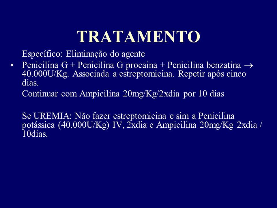 TRATAMENTO Específico: Eliminação do agente Penicilina G + Penicilina G procaina + Penicilina benzatina 40.000U/Kg. Associada a estreptomicina. Repeti