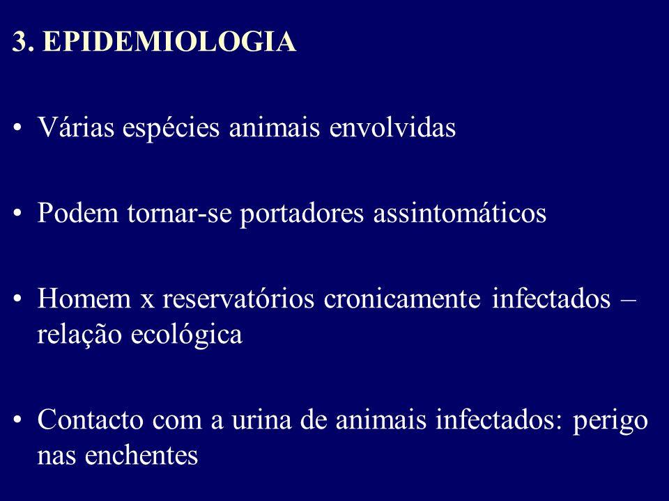 3. EPIDEMIOLOGIA Várias espécies animais envolvidas Podem tornar-se portadores assintomáticos Homem x reservatórios cronicamente infectados – relação