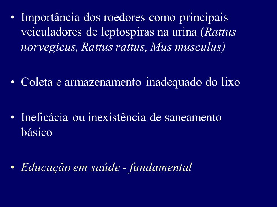 QUADRO CLÍNICO DA LEPTOSPIROSE NO HOMEM Manifestações clínicas semelhantes à gripe Forma ictérica e grave (Síndrome de Weil) Período de incubação: 1 a 24 dias (7 a 14 dias) Início súbito, com febre, cefaléia e dores musculares generalizadas (panturrilhas) Primeira semana da infecção : disseminação para diversos órgãos (Fonte: Manual de Condutas Médicas (www.